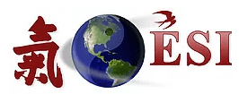 ESI – Executive Security International Logo